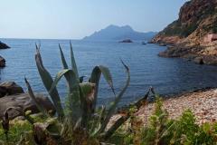 Korsika, Porto, Autor: Charlotte Moser