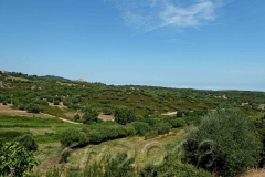 Korsika, unterwegs nach Calvi, Autor: Charlotte Moser